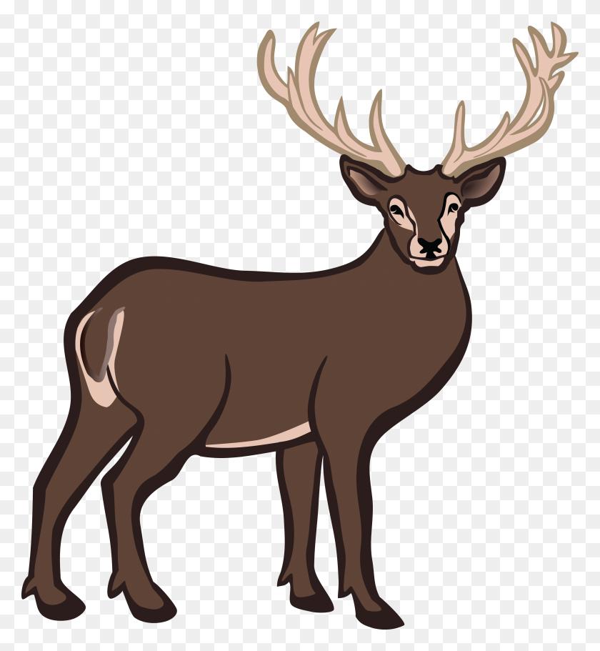 Buck Deer Png Transparent Buck Deer Images - Deer PNG