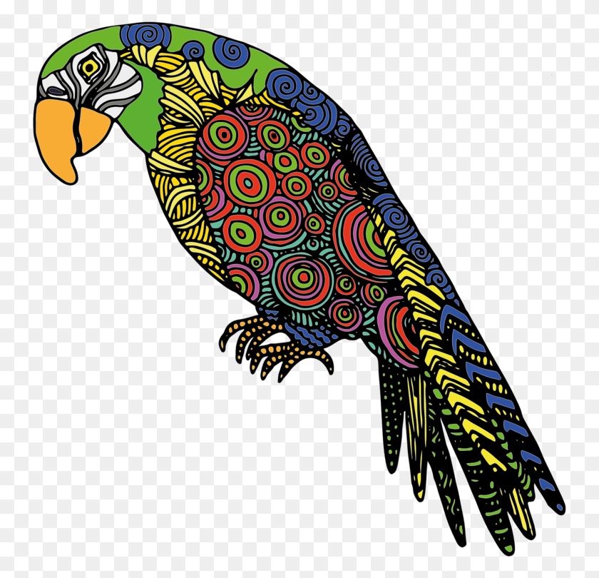 748x750 Budgerigar Fly Parrot Lovebird True Parrot - Lovebird Clipart