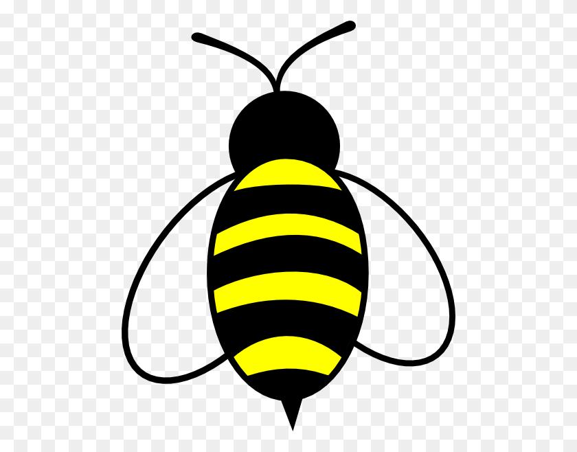Bumblebee Clip Art Look At Bumblebee Clip Art Clip Art Images - Veil Clipart