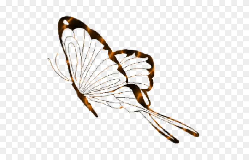 Butterfly Clipart Transparent Background - Butterfly Clipart Transparent