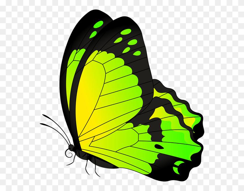 Butterfly Yellow Green Transparent Clip Art Gallery - 123 Clipart