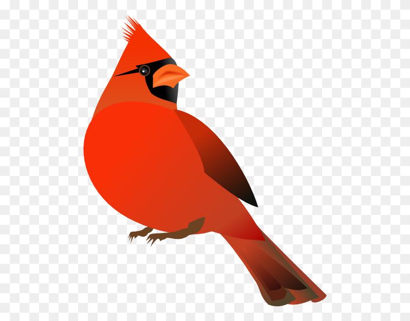 Cardinal Baw Cardinal R Ggif Cardinal Tattoo - Bird Clipart Transparent