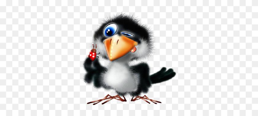 Cartoon Bird Clip Art Png's Cartoon Birds, Birds - Puffin Clipart