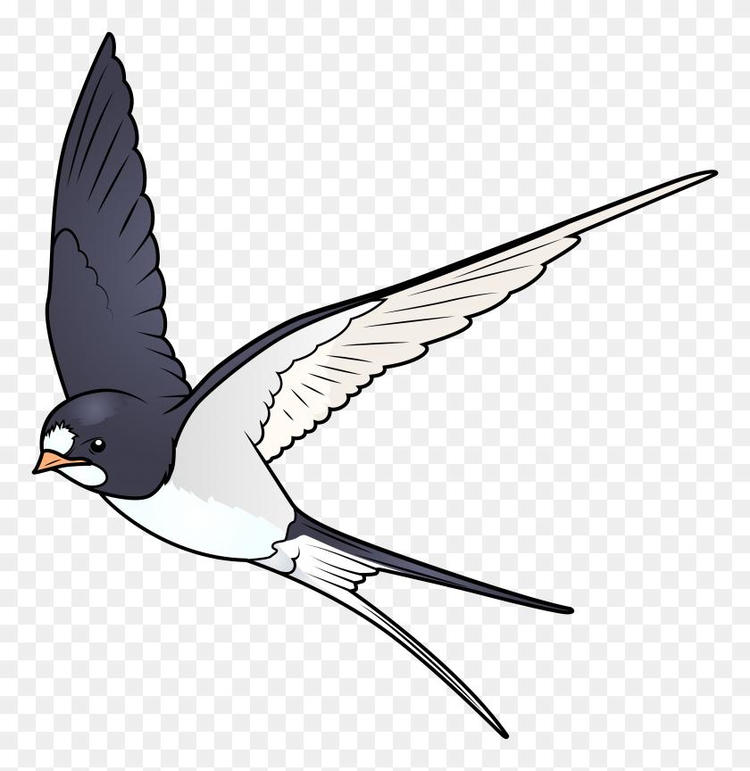Cartoon Bird Png Transparent - Cartoon Bird PNG