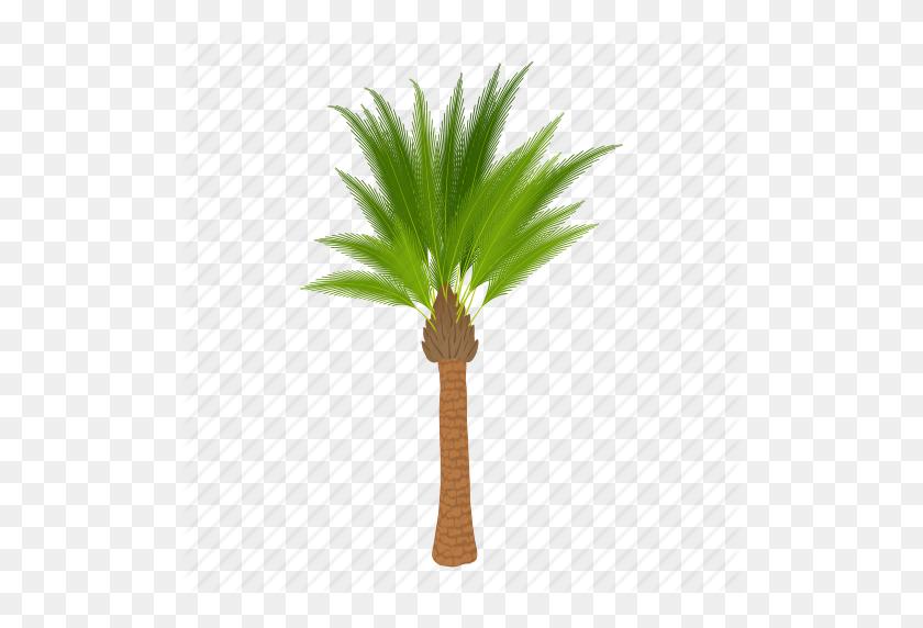 Cartoon, Floral, Green, Oil, Palm Tree, Palmtree, Tree Icon - Desert Tree PNG
