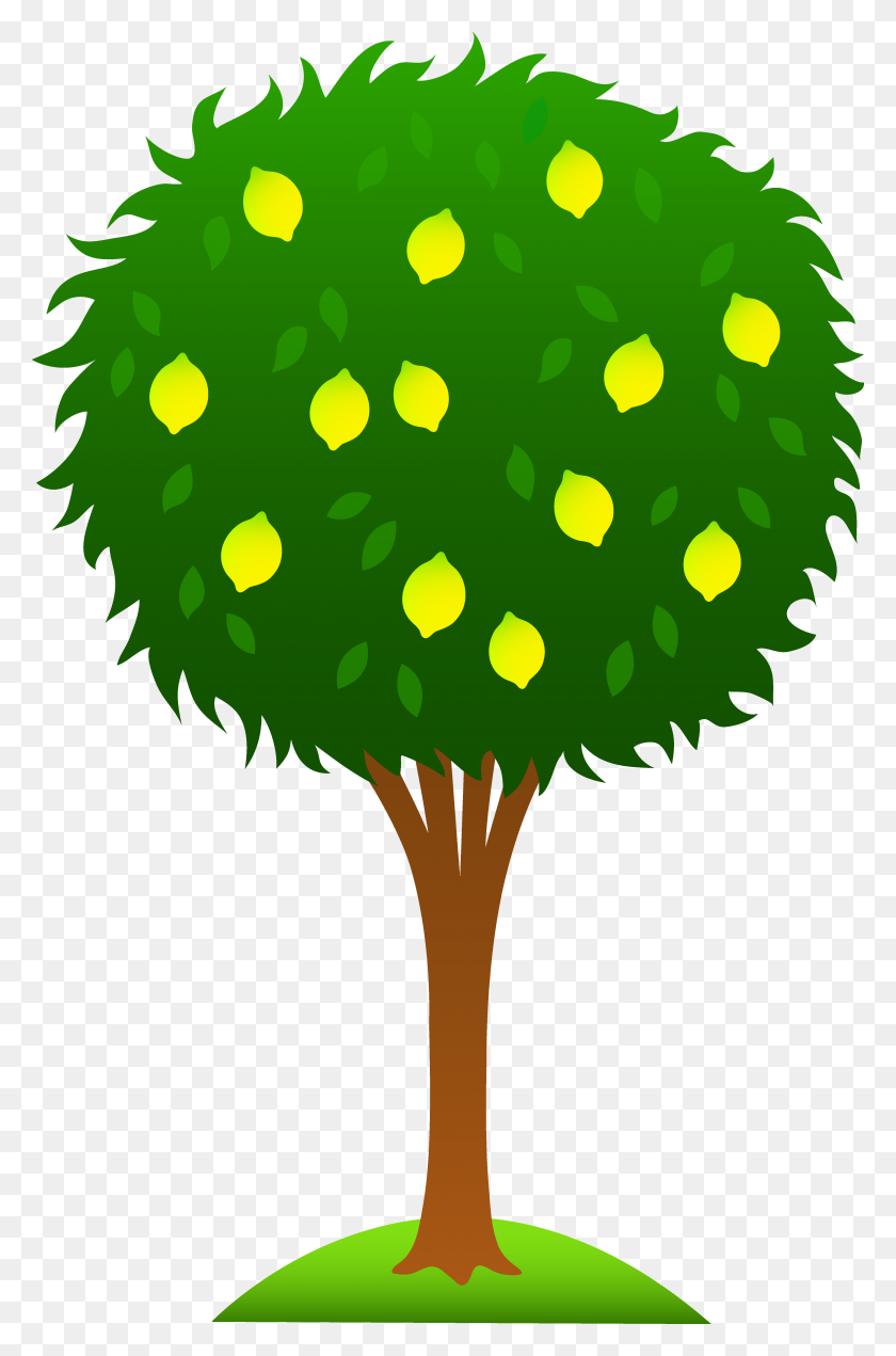 Cartoon Lemon Tree Clipart Lemon In Doodle Drawings, Kids - Tree Top Clipart