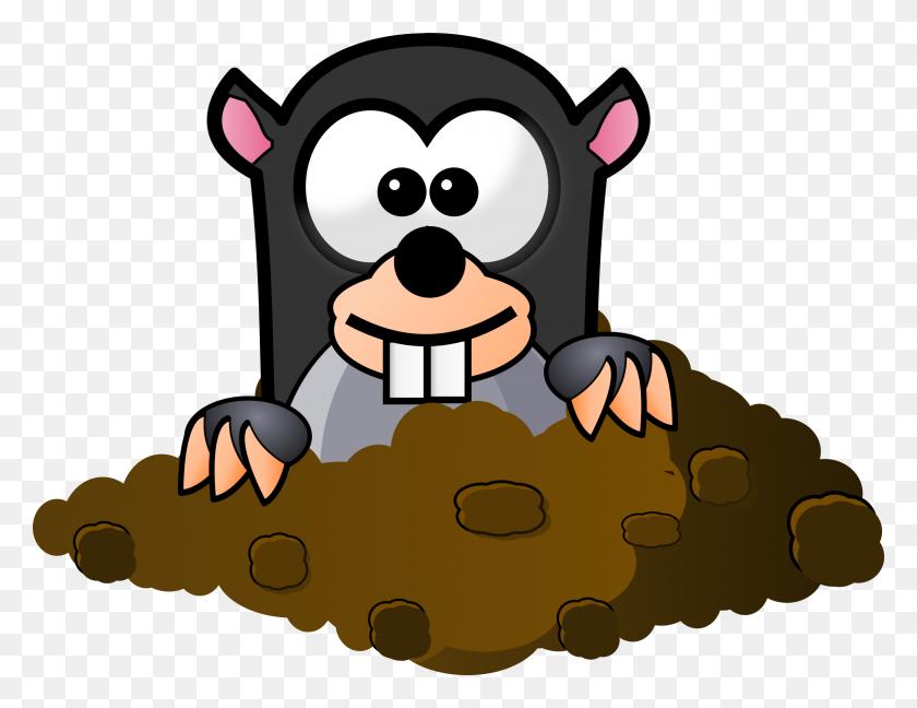 Cartoon Mole Icons Png - Mole PNG