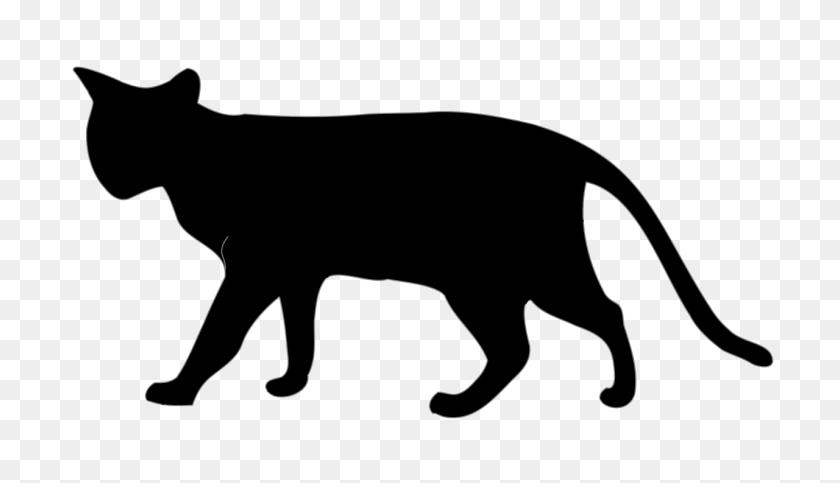 Cat Black - Black Cat PNG