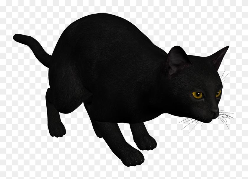 Cat Black Png Clipart - Black Cat PNG