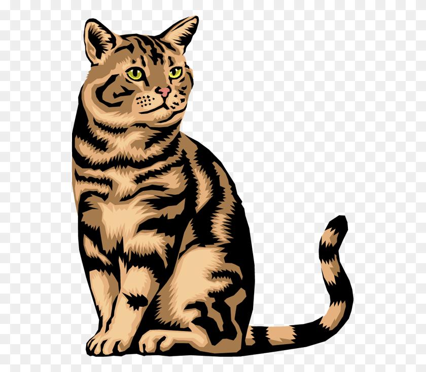 Cat Clip Art Download Free Vergilis Clipart Orange Cat Clipart Stunning Free Transparent Png Clipart Images Free Download