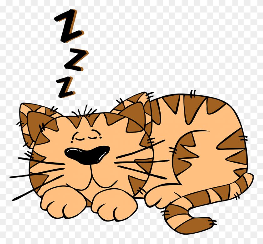 958x885 Cat Nap Clipart Clip Art Images - Tabby Cat Clipart