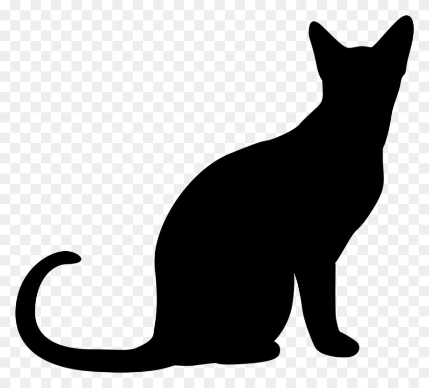 835x750 Cat Silhouette Kitten Drawing Download - Free Clipart Kitten