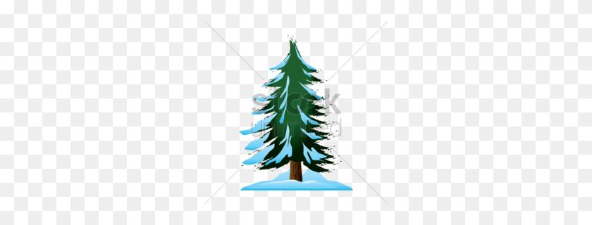 Cedar Clipart - Cedar Tree Clipart