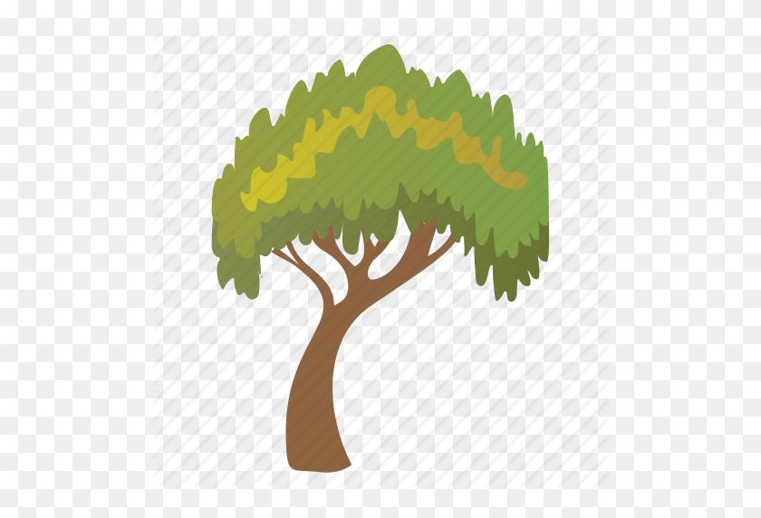 Charter Oak Tree, Deciduous Tree, Evergreen, Forestry, Shrub Tree Icon - Shrub PNG