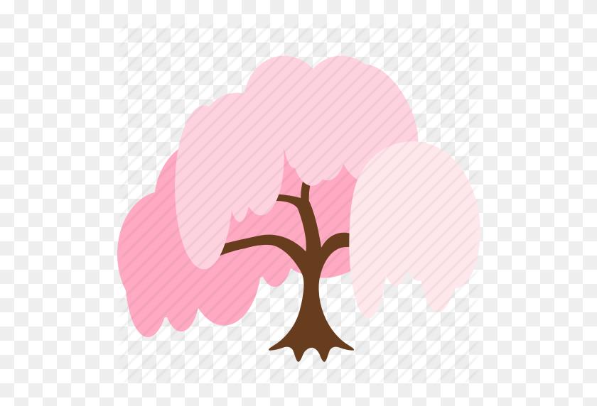 Cherry Blossom, Flower, Hanami, Sakura, Shidare Sakura, Spring - Sakura Tree PNG