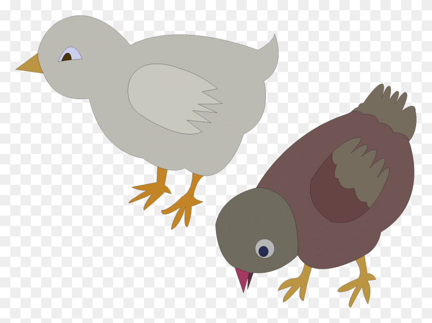 Chickens Figure Color Icons Png - Chickens PNG