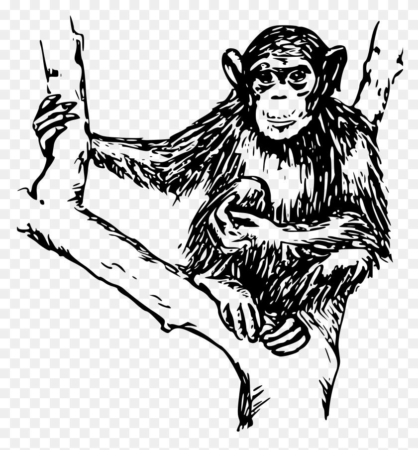 Chimpanzee Ape Gorilla Orangutan Clip Art - Gorilla Clipart