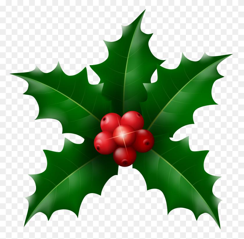 Christmas Holly Mistletoe Clip - Mistletoe Clipart