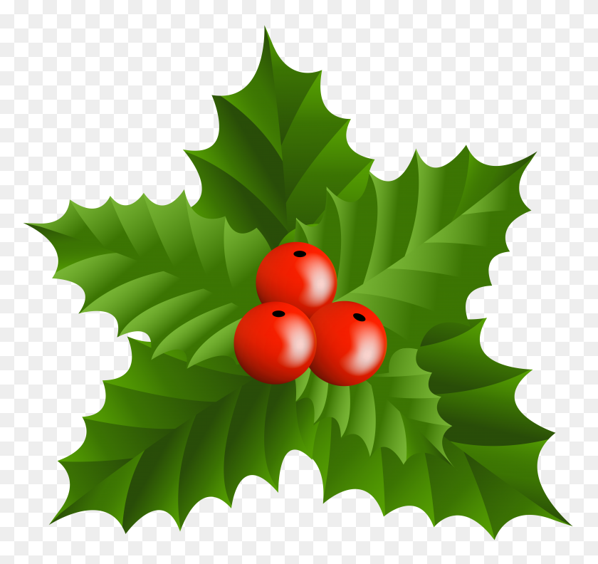 Christmas Holly Mistletoe Png Clip - Mistletoe Clipart