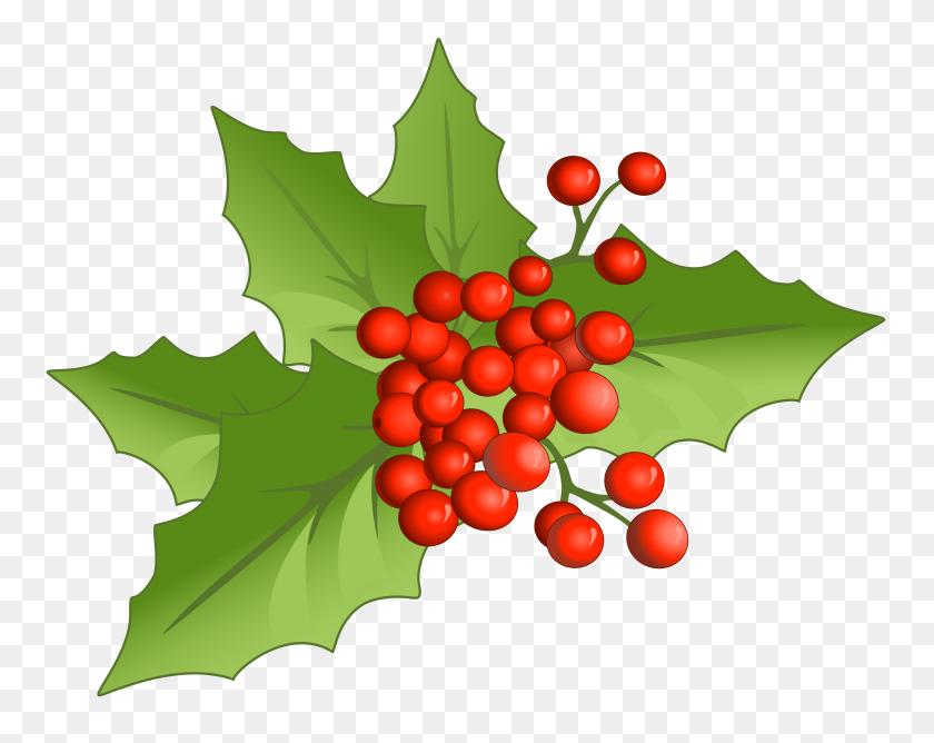 Christmas Large Png Mistletoe - Mistletoe Clipart