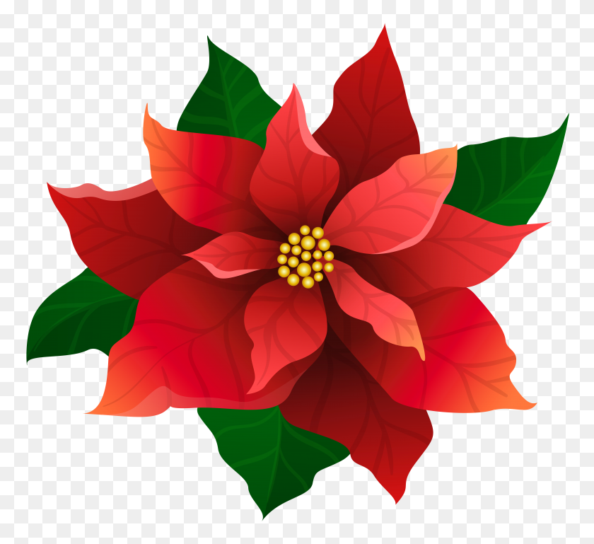 Christmas Poinsettia Red Transparent Clip Gallery - Poinsettia Clip Art