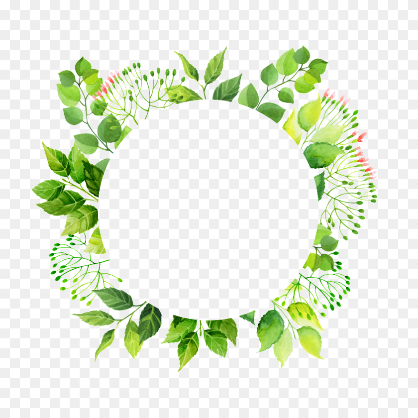 Circulo Verde Marco Png Transparente Descargar Gratis Png Png - Marco PNG