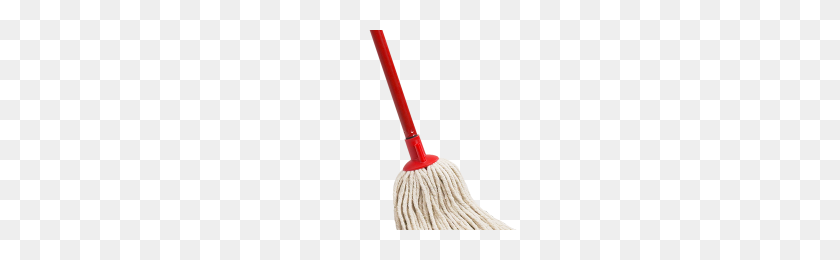 300x200 Cleaning Mop Png Png Image - Mop PNG