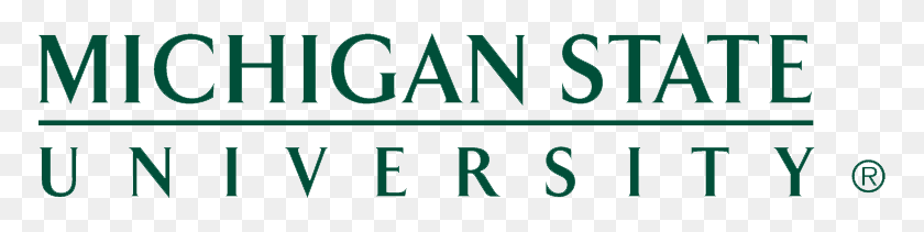 Client Success Story Michigan State University Ngdata - Msu Logo PNG