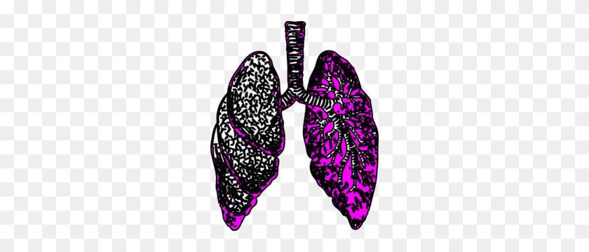 Clip Art - Lungs Clipart