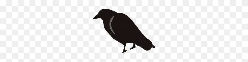 Clip Art Black Crow Clip Art - Black Crow Clipart