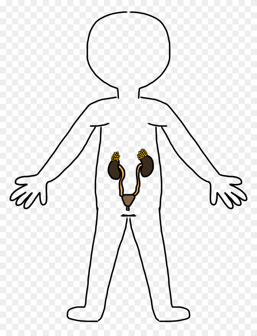 Clip Art Clip Art Of Body Body Parts Clipart Stunning Free Transparent Png Clipart Images Free Download