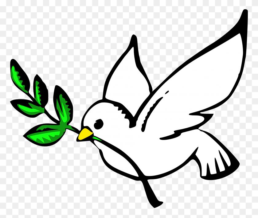 1969x1641 Clip Art Dove Peace Fav - Tail Clipart