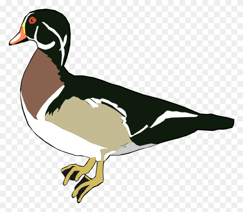 Clip Art Duck - Free Duck Clipart