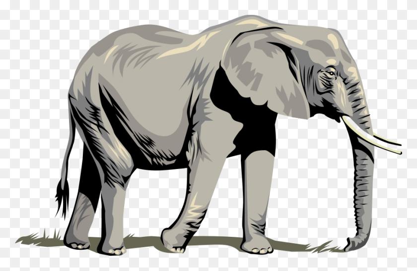 Clip Art Elephant Look At Clip Art Elephant Clip Art Images - Circus Elephant Clipart