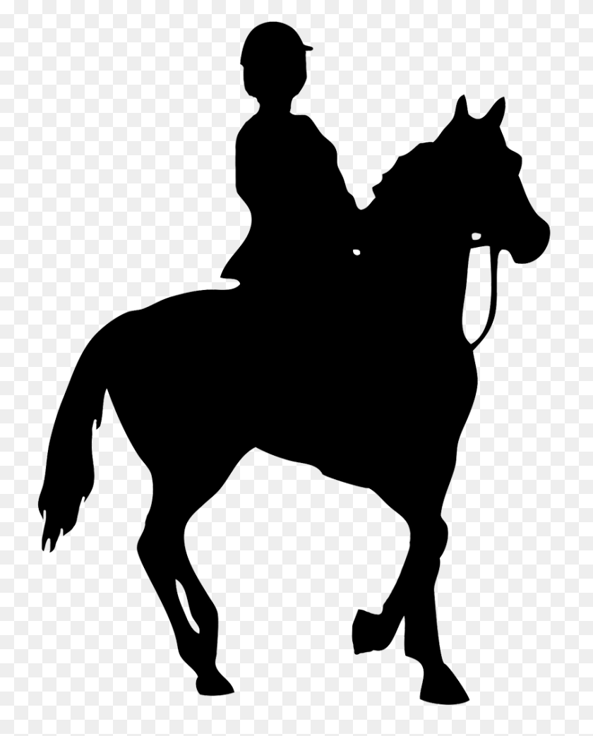 Clip Art Horse And Rider Clip Art Horse Riding Clipart Stunning Free Transparent Png Clipart Images Free Download