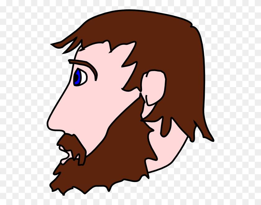 Clip Art Mans Beard Clipart - Toybox Clipart