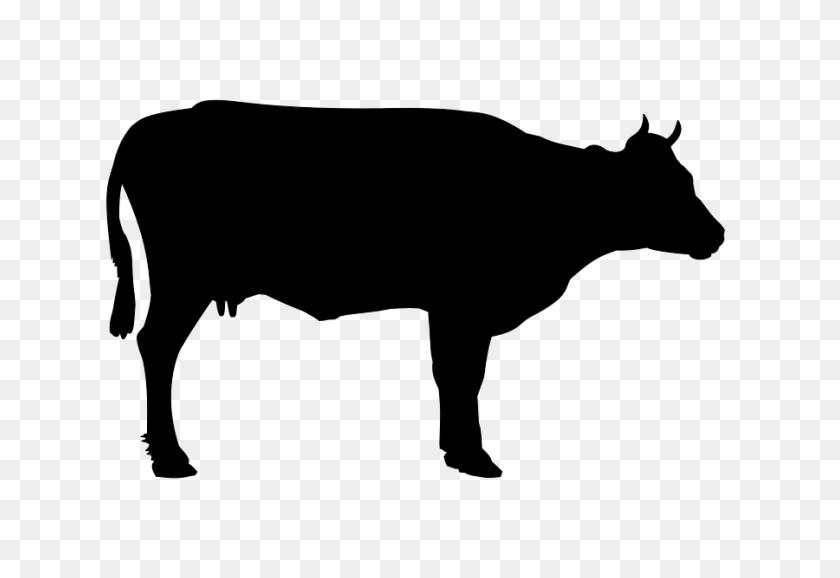 Clip Art Of A Cow - Longhorn Clipart