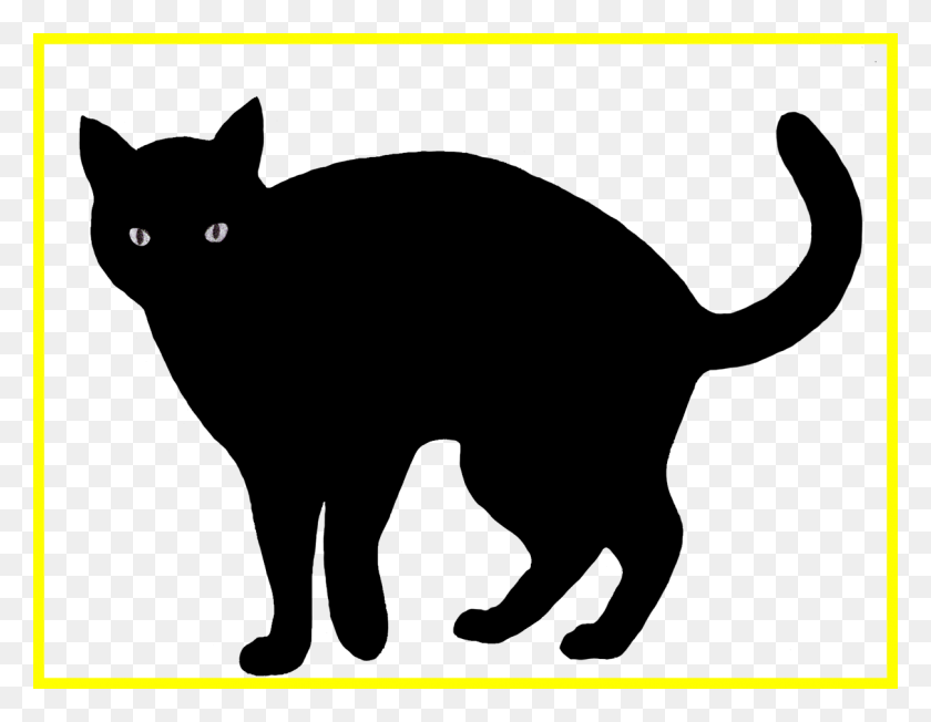 1211x920 Clip Art Of A Scary Cat Scared Cliparts Free Download On Lemonize - Sad Cat Clipart