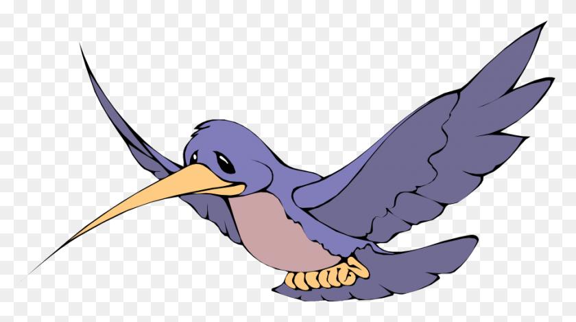 Clip Art Of Bird - Bird Watching Clipart