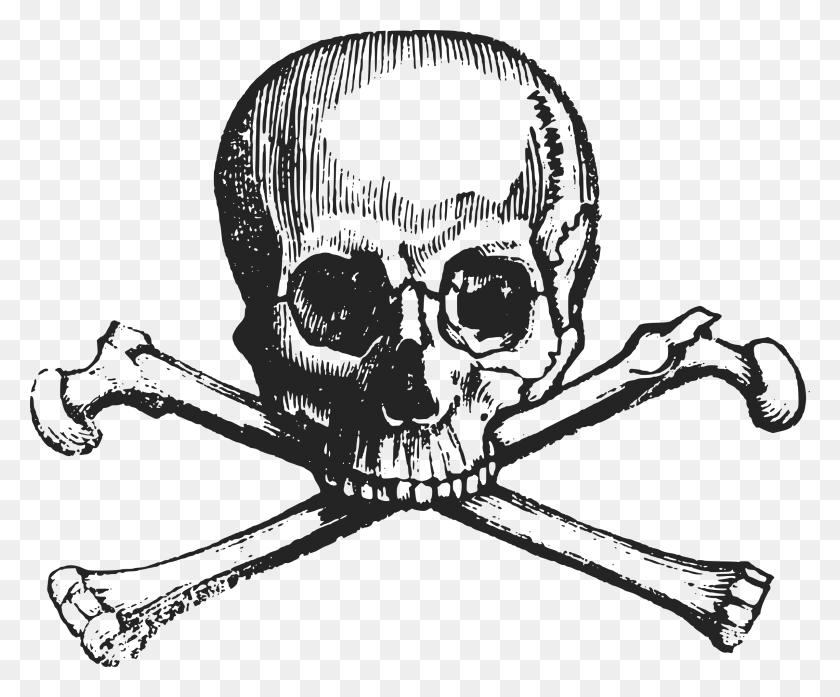 Clip Art Pile Of Skulls - Pile Of Bones Clipart