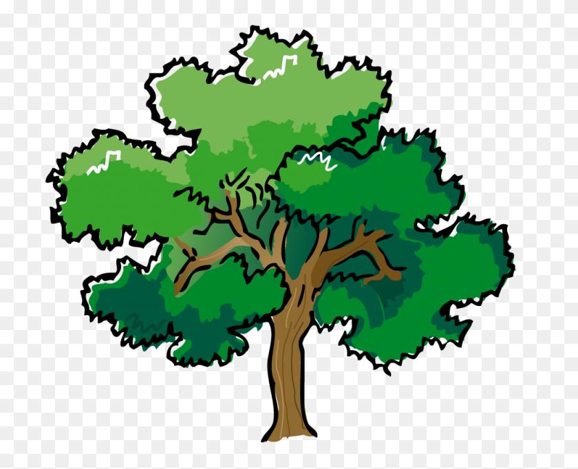 983x784 Clip Art Tree - Woodland Tree Clipart