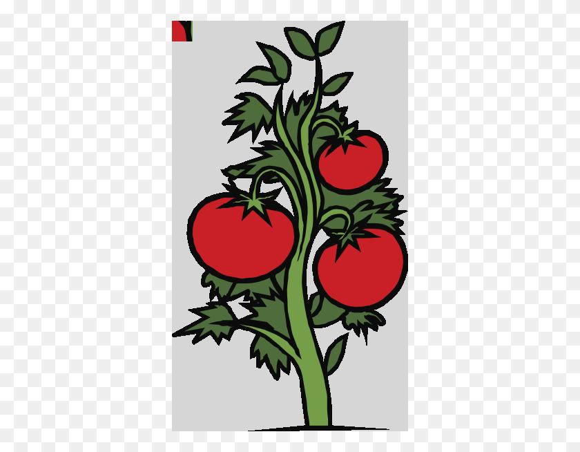 Clip Art Vegetable Garden Border Clipart Meuzvad - Vegetable Border Clipart