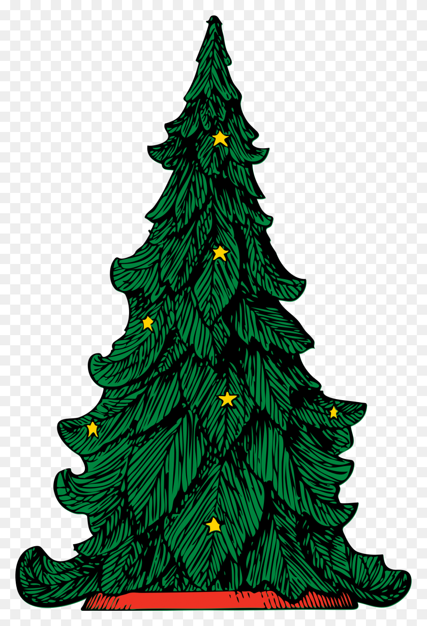 Clipart - Pine Tree PNG