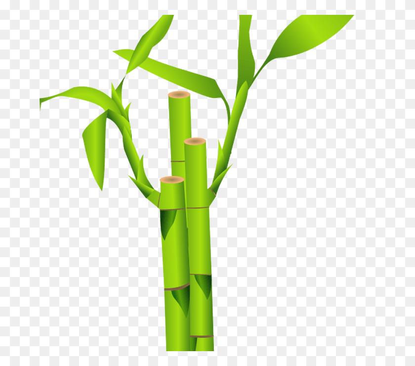 Clipart Bamboo, Bamboo Clip Art Wall - Bamboo Clipart