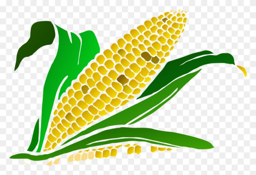 Best Corn Clipart #10956 - Clipartion.com