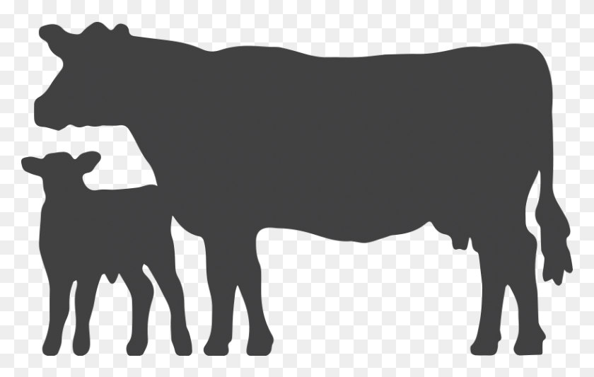 Clipart Cow Outline, Clipart Cow Outline Transparent Free - Cow Clipart Outline
