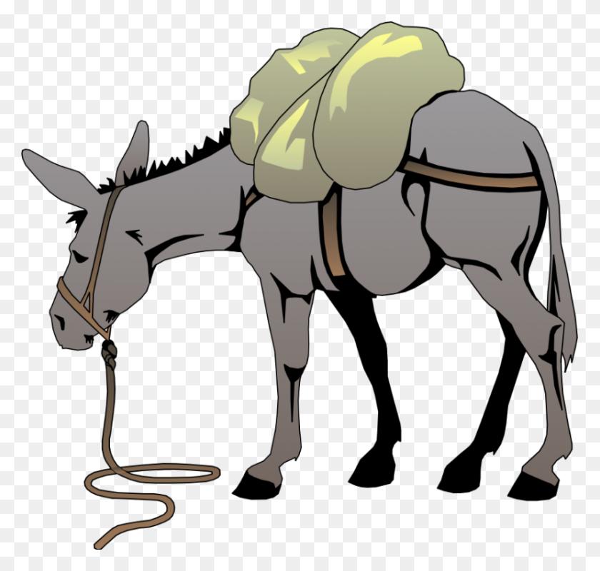 Clipart Donkey Look At Donkey Clip Art Images - Shrek Clip Art