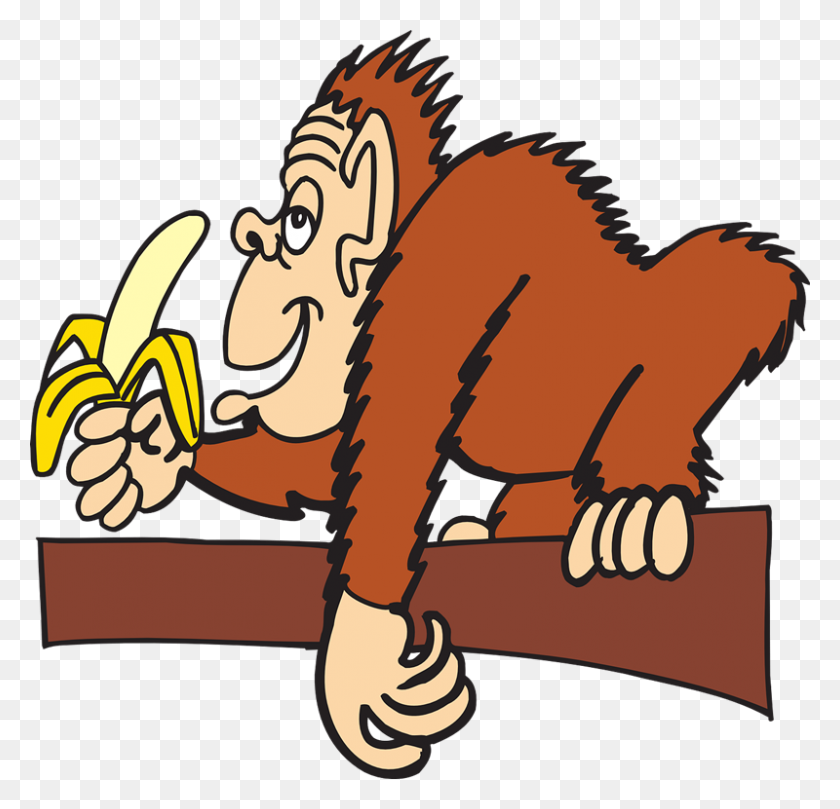 800x769 Clipart Eating A Banana Boy Carrying Sack Lunch And Royalty Free - Sack Lunch Clipart