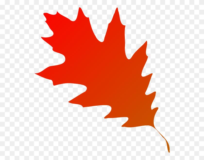 558x597 Clipart Fall Leaves Clip Art Free Clipart Fall Leaves Clip Art - Maple Leaf Clipart