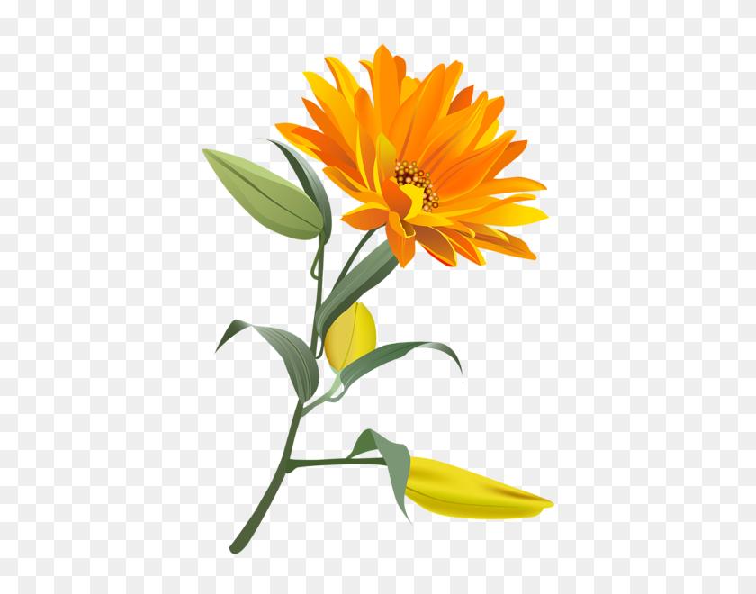 Clipart Flowers, Art Images - Single Flower Clipart
